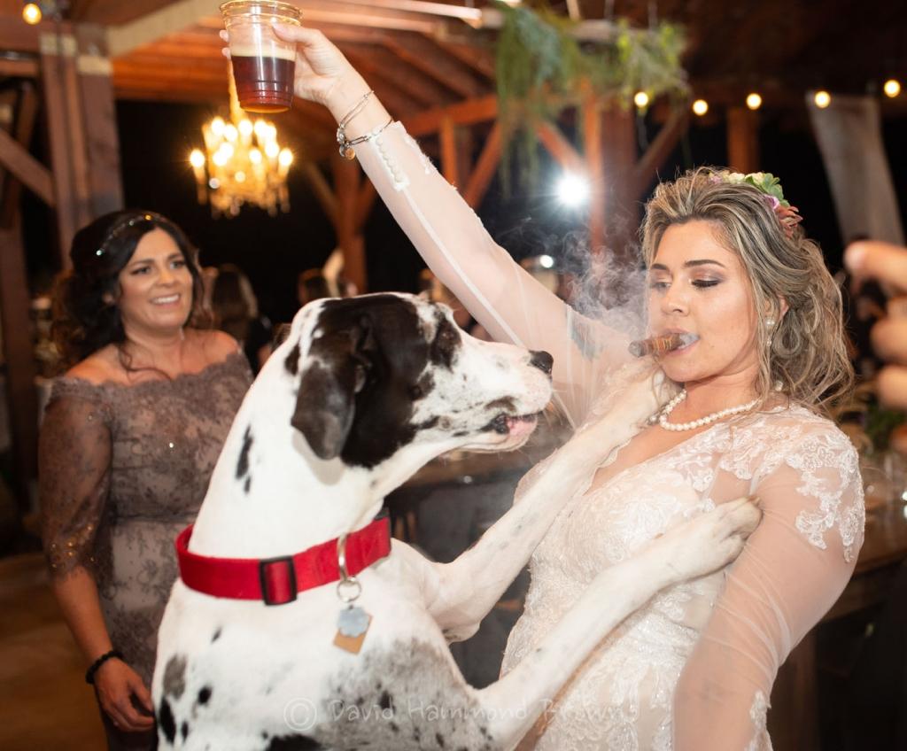 David Hammond Brown Photography - Wedding Doggie Dance