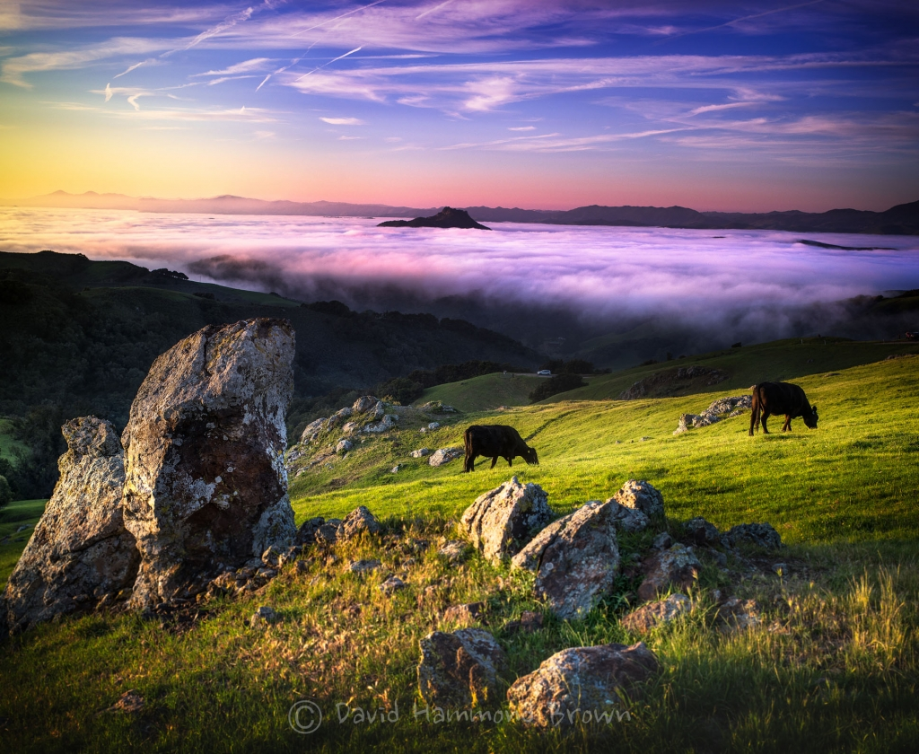 David Hammond Brown Photography - Perfumo Canyon - California