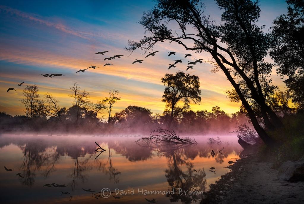 David Hammond Brown Photography - Sunrise on the Mokelumne - Lodi, California