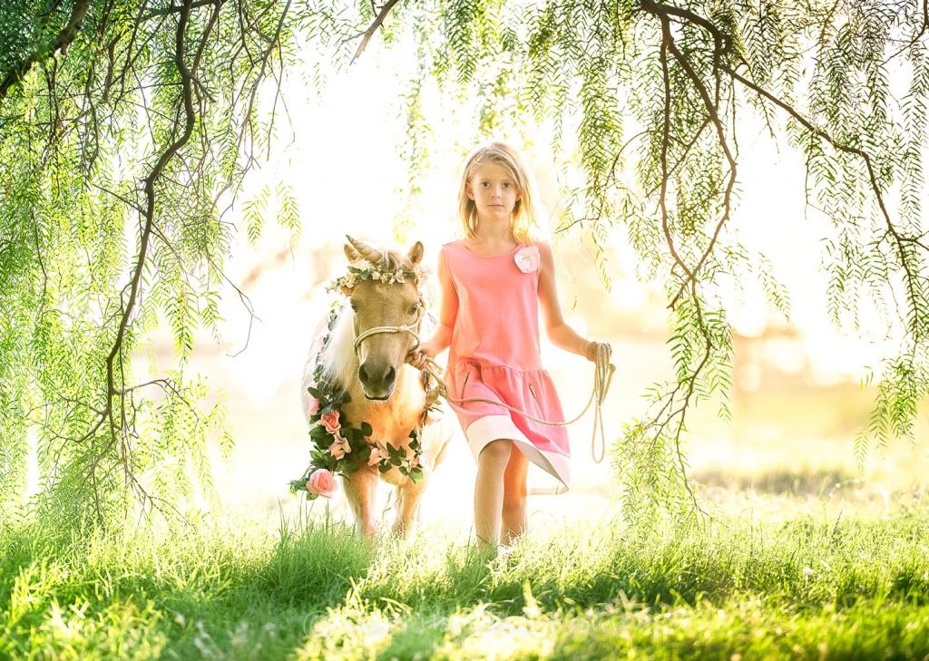 David Hammond Brown Photography - Unicorn