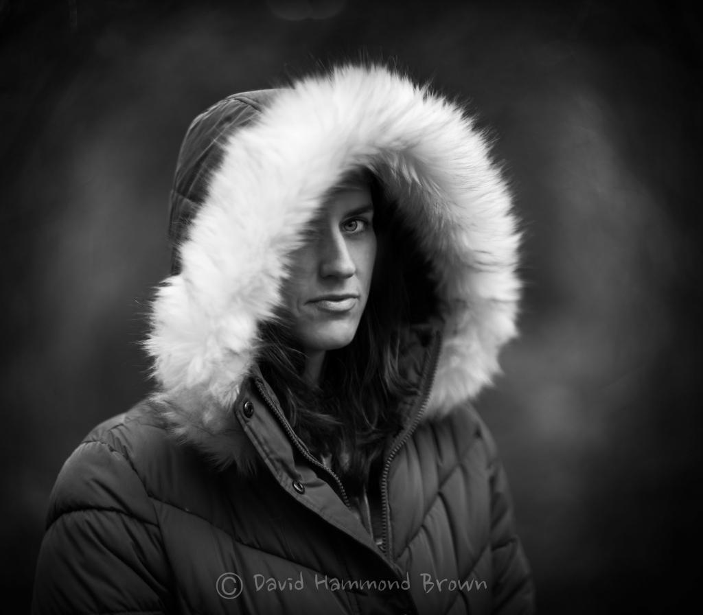 David Hammond Brown Photography - Igloo