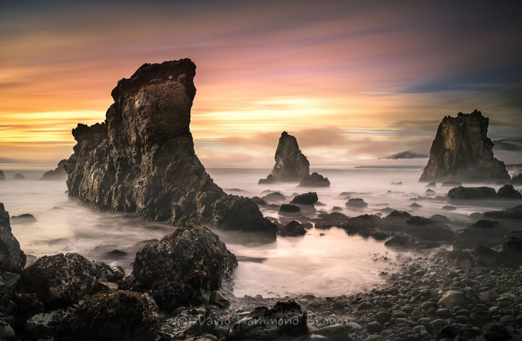 David Hammond Brown Photography - Someday